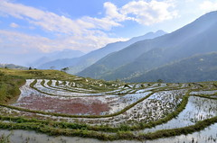 Terrazas asolagadas - Flooded terraces (Gato M) Tags: sapa vietnam arroz arrozal rice montaña mountain cloud sky water nube cielo agua montagne
