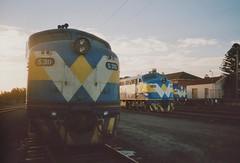 S311 S300 B61 Warrnambool (tommyg1994) Tags: west coast railway wcr emd b t x a s n class vline warrnambool geelong b61 b65 t369 x41 s300 s311 s302 b76 a71 pcp bz acz bs brs excursion train australia victoria freight fa pco pcj