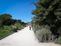 Path through Jardin des Plantes (eutouring) Tags: paris france travel jardin garden gardens plants jardindesplantes plant flowers path paths