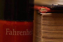 Fahrenheit451 (pinebones) Tags: myfavouritenovelfiction macromondays