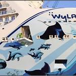 Hull Art of Norwegian Bliss in Papenburg - 8 thumbnail