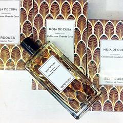 HOJA DE CUBA BERDOUES PERFUMES OIL BY GENERIC PERFUMES FOR MEN (genericperfumes) Tags: perfume oilperfume arabicperfumes fashion style beautiful perfectman outfit fragranceoil perfumeoil fragrance scent perfumes genericperfumes generic shopping