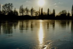 DSC06484 (hofsteej) Tags: middendelfland holland zuidholland netherlands winter february broekpolder vlaardingervaart