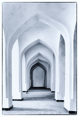 Bukhara arches 2 (Janet Marshall LRPS) Tags: arches bukhara symmetry bw monochrome unescoworldheritagesite silkroadcities citiesofthesilkroad mosque explored