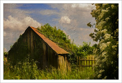 Overgrown(UK) (williamwalton001) Tags: colourimage clouds nationaltrust building borders grasses trees texture framed fineart fence flowers sun|sky|cloud uk pentaxart park greatphotographers