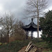 Chinese Garden in Luisenpark Mannheim