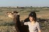 Le jeune dromadaire et la gazelle. (maxguitare1) Tags: femme mujer woman donna dromadaire maroc dromedary dromedario animal