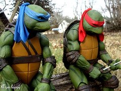 Brotherly Advice (cncfigurephotography) Tags: tmnt teenage mutant ninja turtles neca 14 scale figures figure photography nature art turtle power 80 90s movie movies cartoon comics nerd cosplayer cosplay brothers meditating meditation