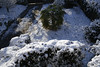 _DSC3916_DxO (Alexandre Dolique) Tags: d850 nikon etampes sous la neige under snow