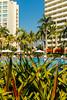 cssPVR-9786 (chucksmithphoto) Tags: jalisco mexico puertovallarta sheratonbuganviliasresort architecture cityscape pool resort swimingpool water tropical