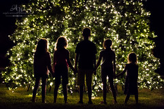 Anticipation (Angela Weirauch Photography) Tags: pearland texas cousins canon canon6d 6d ef24105mm boy girl girls sisters sister twin twins christmas tree lights green