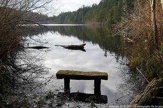 2018-02-11 Heart Lake Trail 210 (01) (1024x680)