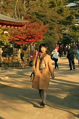 IMG_4986 (jumppoint5) Tags: street urban girl light shadow japan hiroshima autumn miyajima