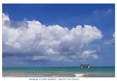 Maragogi el caribe brasileño - Diaz De Vivar Gustavo (Diaz De Vivar Gustavo) Tags: maragogi el caribe brasileño diaz de vivar gustavo mar turquesa palmeras y cocoteros orillas del piscinas naturales arrecifes coral brasil