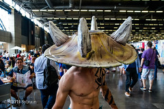 Japan Expo 2017 4e jrs-3 (Flashouilleur Fou) Tags: japan expo 2017 parc des expositions de parisnord villepinte cosplay cospleurs cosplayeuses cosplayers française français européen européenne deguisement costumes montage effet speciaux fx flashouilleurfou flashouilleur fou manga manhwa animes animations oav ova bd comics marvel dc image valiant disney warner bros 20th century fox star wars trek jedi sith empire premiere ordre overwath league legend moba princesse lord ring seigneurs anneaux saint seiya chevalier du zodiaque