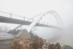 Humber Bay Bridge dissapears in the fog (Matt Henry photos) Tags: