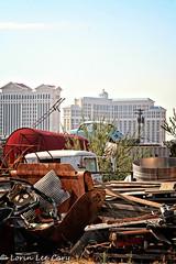 The Other Side of Las Vegas (lorinleecary) Tags: bellagio caesarspalace lasvegas nevada vw junkyard rust scrapiron truck