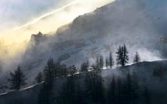 Snow storm on the ridge (Gael Varoquaux) Tags: mountains ridge snow storm backlit trees wind light