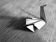 Origami Swan downstream grain (Fay Mason Dunne) Tags: flow crafts paper papercraft swan origami