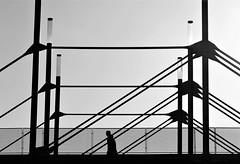 lines (O.Krüger) Tags: hannover deutschland germany niedersachsen messe brücke bridge streetphotography sw schwarzweis socialdocumentary streetlife silhouette peopleinthecity people personen bw bianconero blackwhite urban urbanexploration monochrom