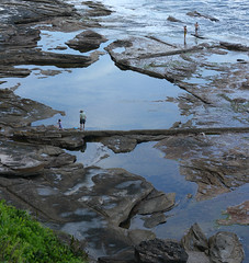 Searching the Tide Pools (philipbouchard) Tags: tidepool ocean calm family beach rocky shore water australia sydney newsouthwales deewhy northernbeaches pacificocean playing nsw coast