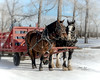 BFF's (L E Dye) Tags: feastofjordan ukrainianculturalheritagevillage alberta canada d5100 horses ledye nikon rural winter