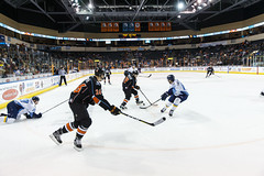 "Kansas City Mavericks vs. Toledo Walleye, January 21, 2018, Silverstein Eye Centers Arena, Independence, Missouri.  Photo: © John Howe / Howe Creative Photography, all rights reserved 2018. • <a style=""font-size:0.8em;"" href=""http://www.flickr.com/photos/134016632@N02/24969554697/"" target=""_blank"">View on Flickr</a>"
