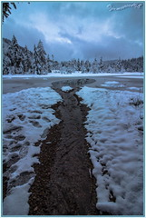 Lac de Lispach (La Bresse - Vosges) (jamesreed68) Tags: lac neige tourbière glace 88 vosges france forêt nature canon eos 600d lispach hiver bresse