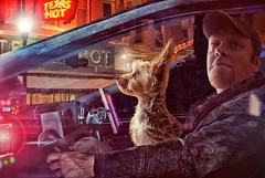 Dog Runner (Farmernudie) Tags: bladerunner blade runner neon signs food dog scifi science fiction future capone terrier lights car