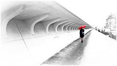"""""""Le parapluie rouge"""" """"The red umbrella"""" Début de la gare des Guillemins, rue Varin, Liège, Belgium (claude lina) Tags: claudelina belgium belgique belgïe liège gare station garedesguillemins santiagocalatrava"""