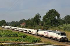 Guillarei (REGFA251013) Tags: tren train locomotora renfe 5242 picasso comboio adif galicia