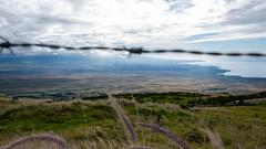 Waimea (50) (BoyUtot) Tags: waimea waimeavalley bigisland hawaii waimeafarmersmarket roadtrip panasonicgh1 lumix 100300mm ramesesmendoza travel nature landscape