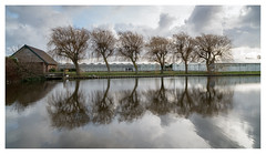 House willows horse woman hothouses (leo.roos) Tags: boomaweg monster kassen hothouses greenhouses willow reflection weerspiegeling westland a7rii carlzeissdistagon2128zf cz zeiss leitax amount darosa leoroos distagont2821 distagon2128zf dayprime day21 dayprime2018 dyxum challenge prime primes lens lenzen brandpuntsafstand focallength fl