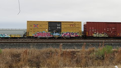 IMG_1356 (jumpsoner) Tags: traingraffiti trains traingraff trainspotting tracksides benching benchingsteel benchingtrains bencher boxcars benchingfreights bgsk benchinhsteel railroadphotography railroad railfan graffiti graffculture freights freightculture freightgraffiti foamer foamers freghtculture
