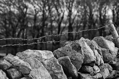 Buxton - 17.02.2018 (samward1507) Tags: buxton blackandwhite landscape natural nature canon canon200d 50mm nifty50