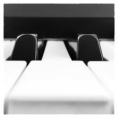 Key of D (Timothy Valentine) Tags: home blackandwhite 52weeks piano 2018 music misc eastbridgewater massachusetts unitedstates us