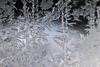 DSC_7810 (harynjk23) Tags: frostwork winter freez jégvirág tél macro nikon d5300 extension tubes