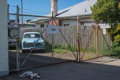 West Footscray (Westographer) Tags: westfootscray melbourne australia westernsuburbs suburbia volvo sleepingdog ocky westdographer garage gates