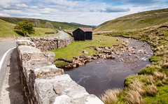 Grains o' th' Beck Meadows in Lunedale (Joe Dunckley) Tags: b6276 britain british countydurham england english grainsothbeck grainsothbeckmeadows grainsofthebeck greatbritain luneforest luneheadbeck lunedale northpennines riverlune teesdale uk unitedkingdom yorkshire agriculture animal barn bridge countryside farm farmanimal farming field grazing landscape livestock meadow moor moorland moors nature outdoors pasture river road sheep spring sunny transport transportation valley water