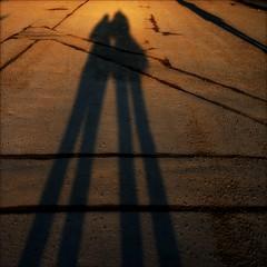 Tall shadows (*Kicki*) Tags: shadows long female women people tall stockholm sweden square riddarholmen ffp finafotopolare lorena kicki selfportrait selfie 50mm street road lines sunset goldenhour evening