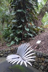The palm-leaf xylophone (tanetahi) Tags: tanetahi