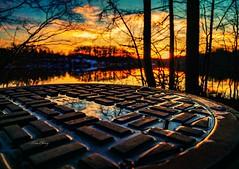Sunset (still_shotz) Tags: maryland trees drainage reflection lake sunset