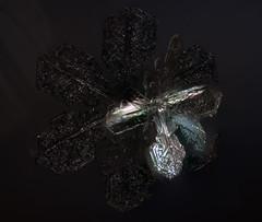 DarkStar (peterobrien186) Tags: birefringent birefringence polarization crossedpolarization twist basal opticallyactive snow snowflake snowcrystal crystal winter macro color