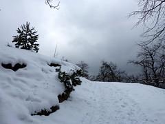 Borult ég a Tarnai-pihenő felé (ossian71) Tags: magyarország hungary budaihegyseg tél winter természet nature tájkép landscape hegy mountain