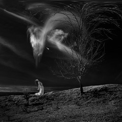 blown away (old&timer) Tags: background infrared filtereffect composite surreal song4u oldtimer imagery digitalart laszlolocsei