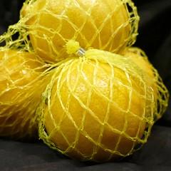 Citrus catch (Englepip) Tags: fruit net yellow citrus macromondays food macro