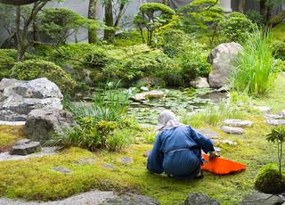 Jardinier de mousses 永観堂禅林寺 Eikan-dō Zenrin-ji  Kyoto