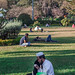 Having a chai at Cubbon Park