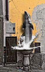 City dolphin distractions (Marco Trovò) Tags: marcotrovò hdr pisogne lagodiseo valcamonica brescia italia italy houses case buildings costruzioni strade streets city città architecture architettura fantasy