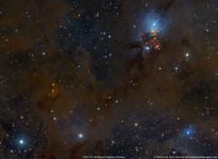 Fire works and Star Dust in Perseus (Crop) (Terry Hancock www.downunderobservatory.com) Tags: paulswift qhy qhy367c moonrockastro space sky astronomy astrophotography astroimaging